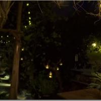 アビゲイルの庭、BBCテレビで紹介